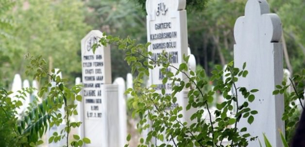Mezarlıklar E Devletten Sorgulanabilecek